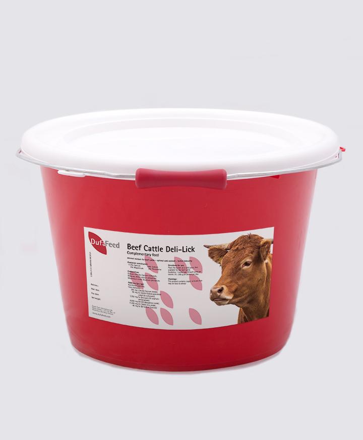 Beef Cattle Deli-Lick